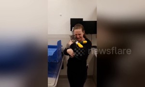 Emotional moment owner is reunited with cat after devastating Camp Fire