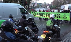 Climate change activists block road at Tower Bridge