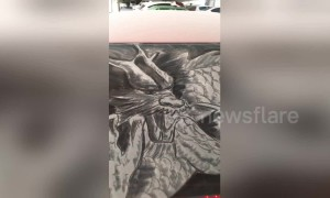 Art teacher makes amazing drawings out of dust on dirty cars