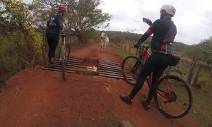 Bike Riders vs Bull