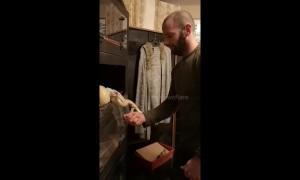Snake feeding goes horribly wrong as boa sinks teeth into hand