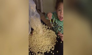 This Kid is Serious about Cereal