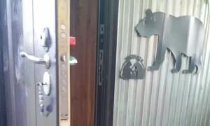 Cheeky Bear Opens Door to Let Itself Inside