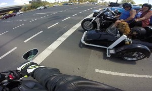 Dog Riding in Motorcycle Sidecar
