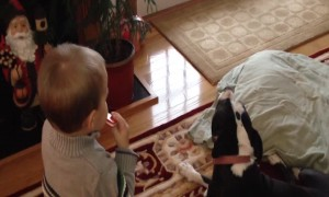 Toddler and Dog Just want to Make Music!