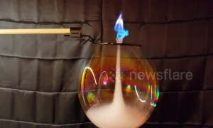 Scientist makes 'supernatural' smoke vortex before lighting it on fire