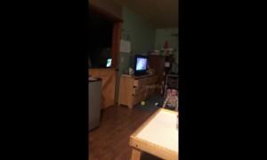Home video shows moment 7.0 earthquake strikes Anchorage, Alaska