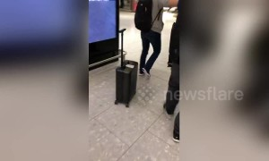 Woman is chased by her own automated suitcase through Heathrow airport