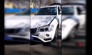 Runaway horse gallops head-on into a BMW