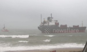 Locals flock to see Russian ship run aground by low tide
