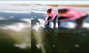 Fishermen break frozen river with axes to get giant fish stuck inside