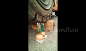 Man delicately drives a forklift to light lighters placed on eggs