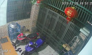 Thieves Break Locked Gate to Swipe Motorcycles