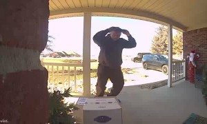 UPS Driver Dances for Home Surveillance Camera