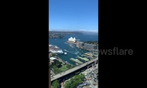 Fog engulfs Sydney Harbour in oddly soothing timelapse video