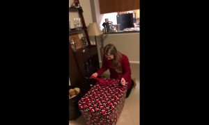 Wife's emotional reaction after getting surprise puppy for Christmas