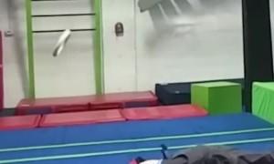 Epic Ninja Training Fall