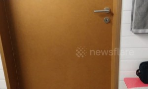 Video of never-ending bathroom door stuns the internet