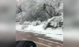 Tucson a winter wonderland as rare snow blankets Arizona city