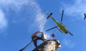 Tree Removal by Helicopter