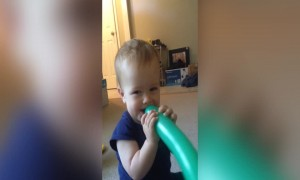 Baby Can't Stop Laughing at Balloon
