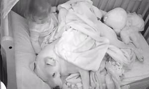 Little Tyke Tucks in Cuddle Buddy