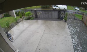 Delivery Driver Hucks Package Over Gate
