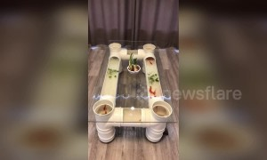 Creative man makes fish tank tea table