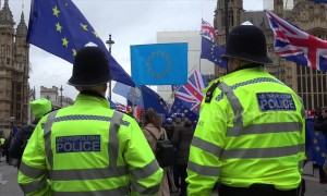 Yellow Vests set fire to EU flag ahead of Brexit vote in Parliament