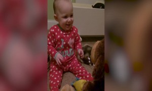 Baby Becomes Best Friends with Stuffed Animal