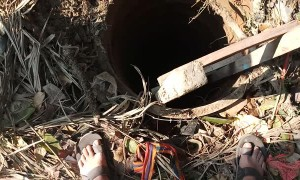 Dog Rescued from a Deep Dark Hole