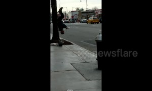 New York man gives incredible flute performance while hanging upside down