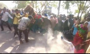 Dancing horse gets out of control at Indian wedding and charges into crowd