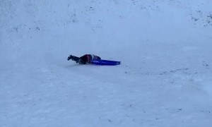 Sledders Taking a Spill