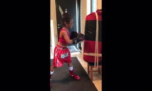 4-year-old boxing prodigy shows off some impressive skills