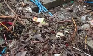 Irrigation Channel Completely Blocked by Garbage
