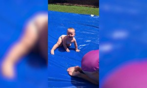 DIY Slip and Slides | Funny Fails Compilation