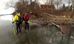 Wild boar heroically rescued from frozen lake