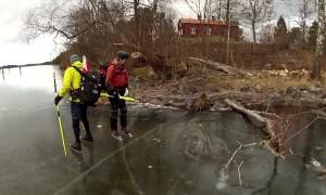 Wild boar heroically rescued from frozen lake
