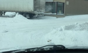 Trucker Struggles with Tight Right Turn