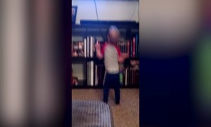 Boy who Barely Knows how to Walk can Dance like Crazy!