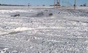 Snowmobile Dumps its Rider and Keeps Rolling