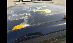 Frying Eggs on car's roof in 47C Adelaide hottest day on record