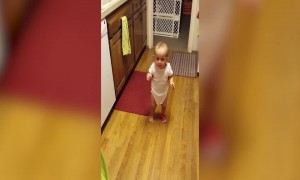 Baby Laughs so Hard she Falls Down!
