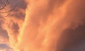 Fire Tornado Cloud Lights up Morning Sky