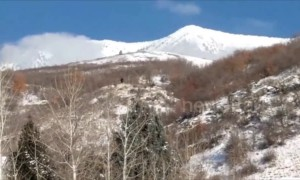 Hunters claim to have spotted Bigfoot in the foothills of Utah