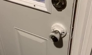 Doorknob freezes from the inside during Chicago polar vortex