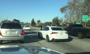 Runaway Dog on Busy California Freeway