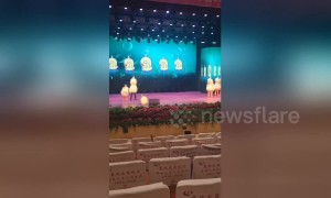 Dedicated duck dance performer forgets to leave stage during rehearsal