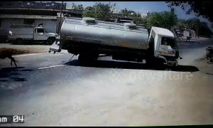 Fast-thinking truck driver makes amazing swerve to avoid cow in the road